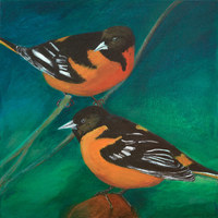Two Baltimore Orioles