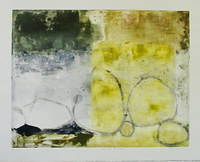 Yellow Wall II (reflection), 18 x 23 inches, framed mixed media monotype